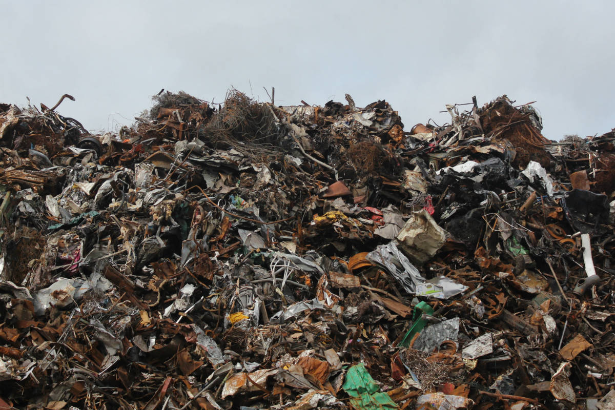 The Waste Solution | Trash and Junk Removal Experts